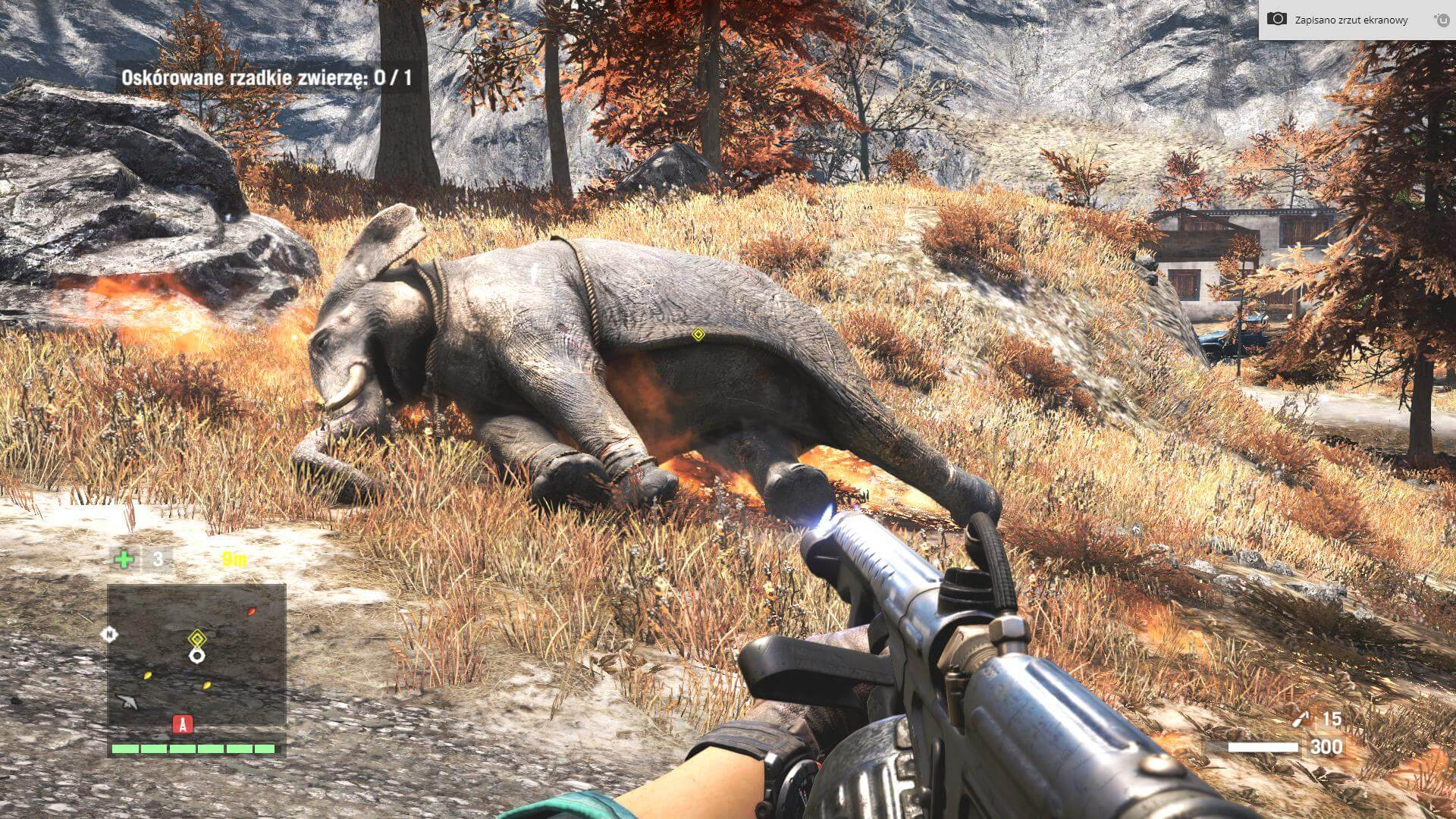 Słonia se spaliłem.