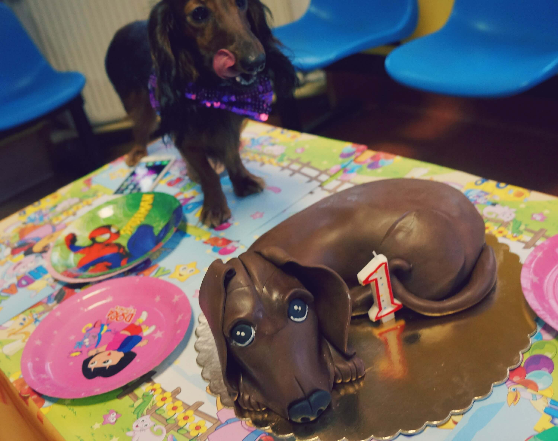 a-z-tortem