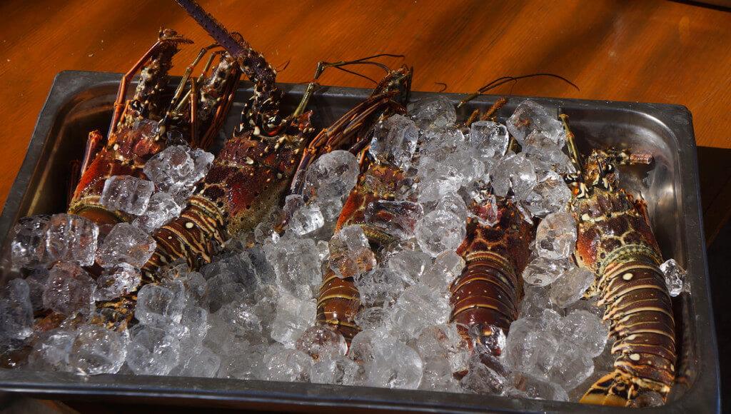 obiad-dominikana-restauracja