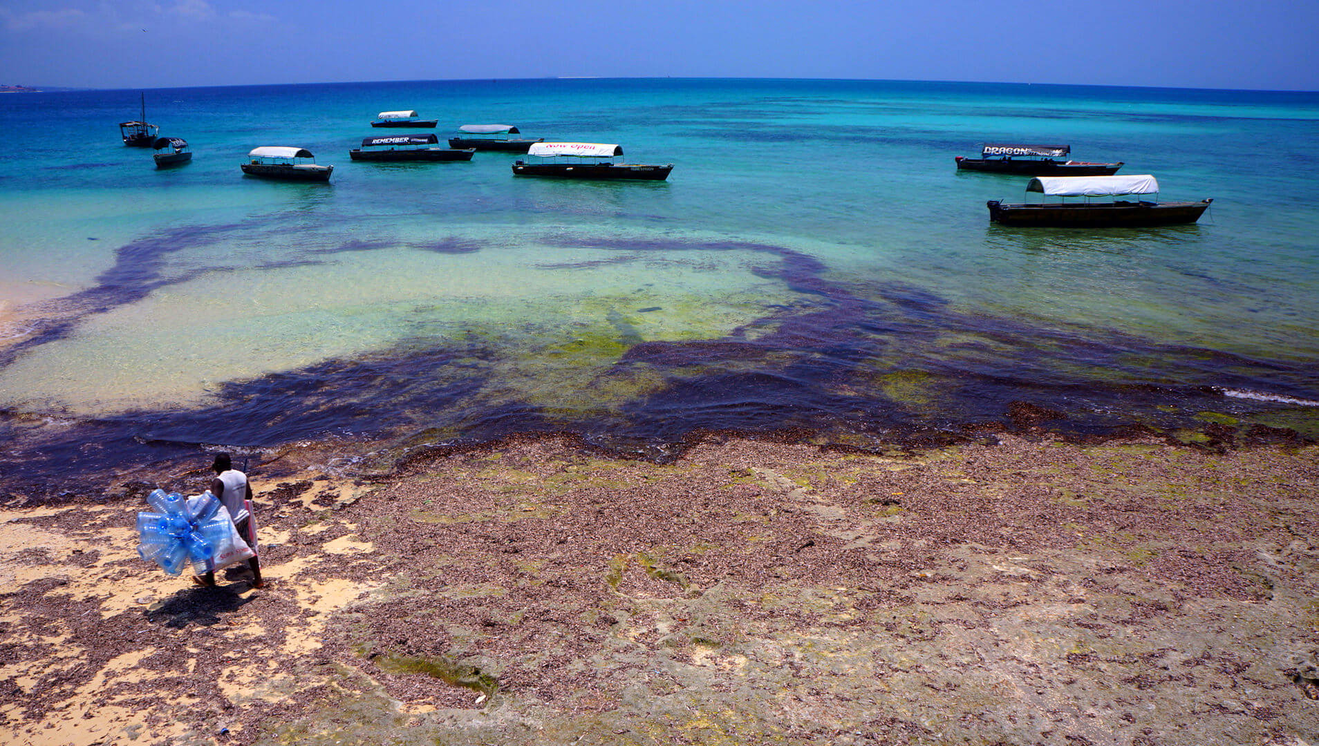 brzeg morza zanzibar