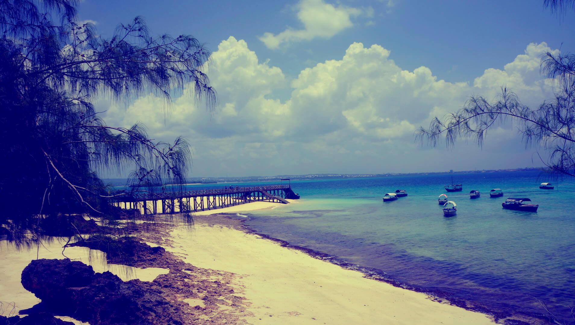 near paradise